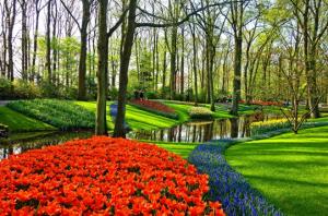Garden Design Barrie