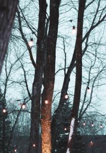 Outdoor Lighting Barrie