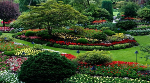 Landscaping Barrie Ontario